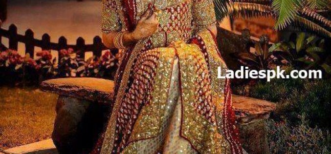 Fancy Dresses 2013 Bridal Lehenga Designs with Price