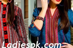Mausummery Lawn Collection 2013 for Women & Grils